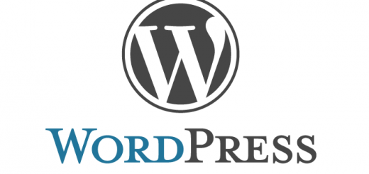 The-WordPress-Vulnerability-Database_html_m6e01b864